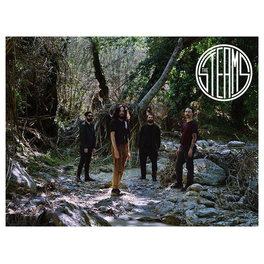 Οι The Steams είναι μια acid/psychedelic rock μπάντα από την Αθήνα. Ξεκίνησαν να παίζουν μουσική το 2012